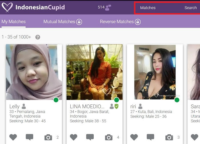 matches indonesian cupid
